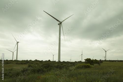 molinos de viento-electricidad-energia alternativa-España Wallpaper Mural