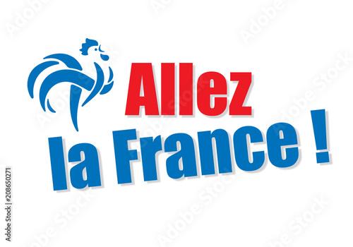 Fotografie, Obraz  Allez la France