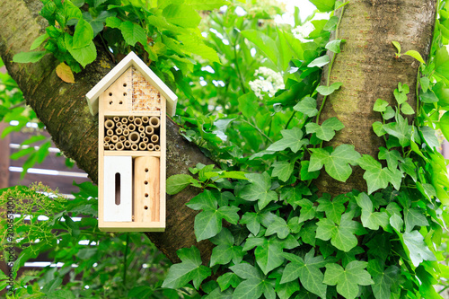 Fotografia A wooden insect hotel in the tree