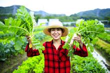 畑の作業をする女性