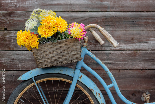Rusty vintage blue bike with basket of flowers