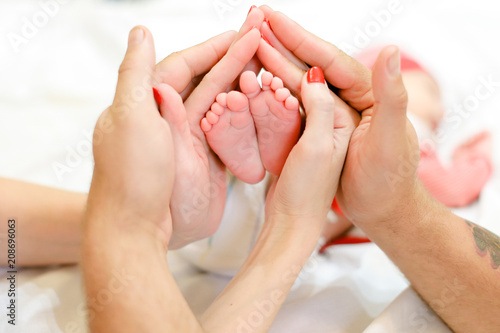 Obraz Parents hands holding newborn baby legs. Concept of happy family and babes. - fototapety do salonu