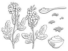 Mustard Plant Graphic Black Wh...