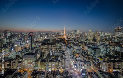 Spoed Foto op Canvas Stad gebouw Tokyo city view with Tokyo Tower at night
