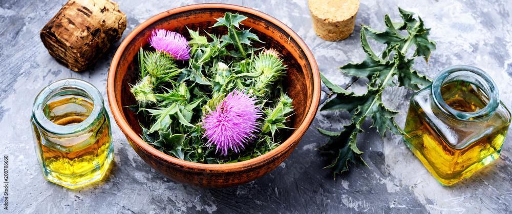 Fototapety, obrazy: Natural herbal medicine