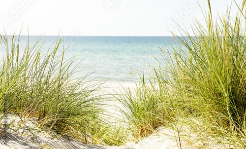 Fototapeta Wydmy weg-zum-strand