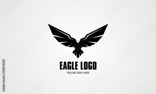 Abstract Eagle Vector Logo Canvas Print