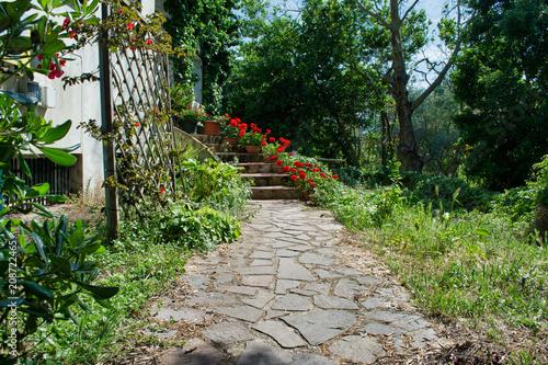 Fotobehang Tuin Flowered garden in spring