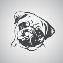 Cute Pug Dog Head. Vector Illu...