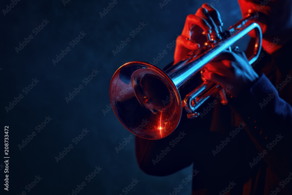 Fototapety, obrazy: Jazz band performs at the club