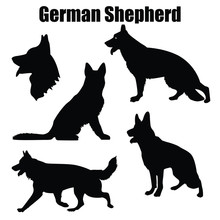 Vector Illustration Of German Shepherd Dog In Different Poses Isolated On White Background.