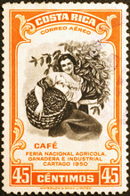 Woman Picking Coffee Berries On Vintage Postage Stamp Of Costa Rica