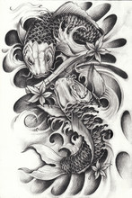 Fancy Carp Fish Tattoo.Hand Pencil Drawing On Paper.
