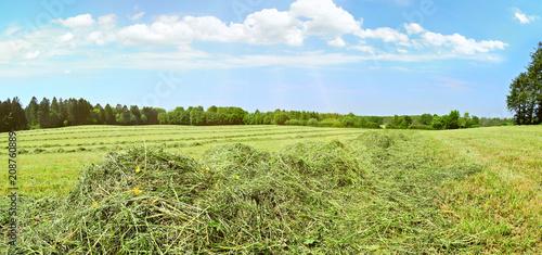 Valokuva Heu auf dem Feld - Panorama