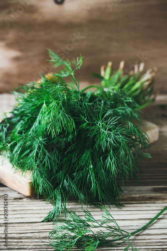 Canvas Print Fresh homegrown dill on rural table
