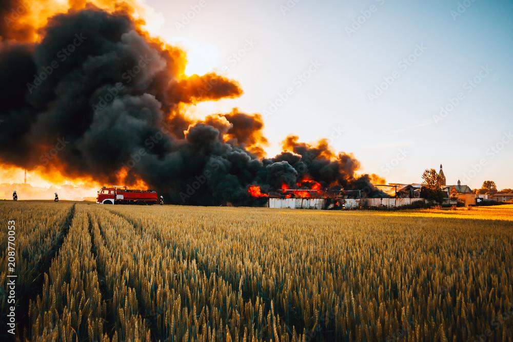 Fototapeta Firefighters battle with huge fire among fields