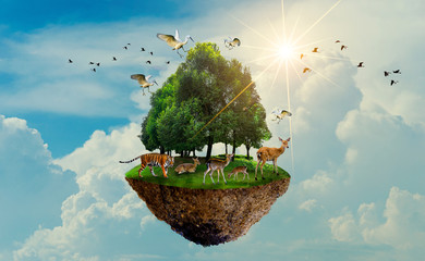 Fototapeta Niebo forest tree Wildlife tiger Deer Bird Island Floating in the sky World Environment Day World Conservation Day Earth Day