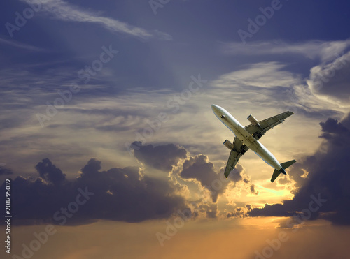 Large airliner in cloudy sky Canvas Print