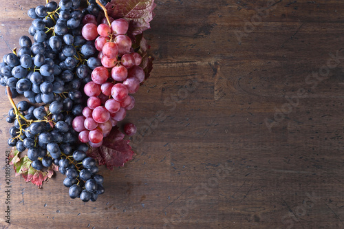 Photographie Grapes bunch with leaves.