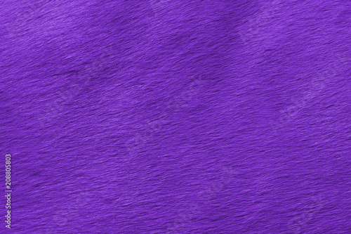 abstract view of the horse's wool toned in the color of the year Pantone ultra violet Wallpaper Mural