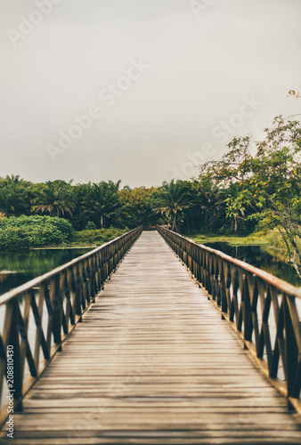 Staande foto Brug Vertical shot of a misty wooden bridge stretching into the vanishing point with muskeg pond on the sides and the jungle forest in the distance, overcast summer day, Praia do Forte, state Bahia, Brasil