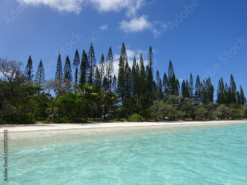 Staande foto Oceanië White Beach and Turquoise Ocean - Isle of Pines - New Caledonia