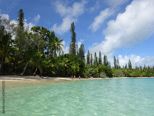 Poster Oceanië Beautiful Beach - Baie de Kanuméra - Isle of Pines