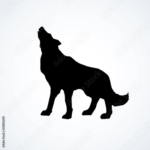 Wolf. Vector drawing Fototapet