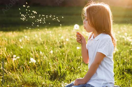 Obraz Little girl blowing dandelion. - fototapety do salonu
