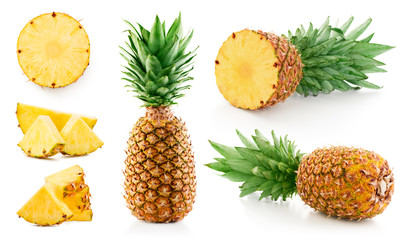 pineapple leaf collection