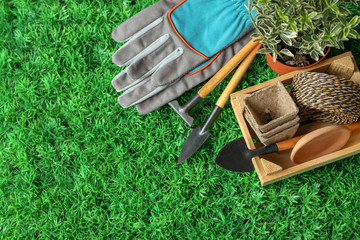 Composition with plant and professional gardening tools on artificial grass