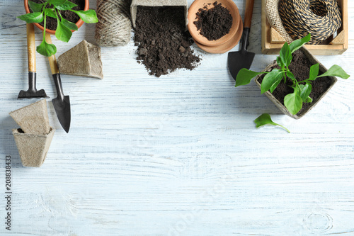 Aluminium Prints Garden Flat lay composition with gardening tools and plants on wooden background