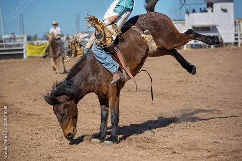 Photo Bareback Bucking Bronc Riding At Country Rodeo