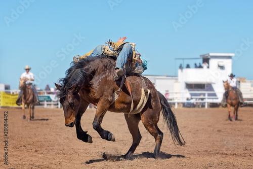 Bareback Bucking Bronc Riding At Country Rodeo Canvas Print