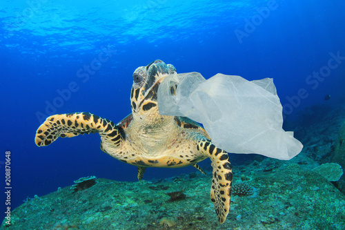 Poster Tortue Plastic pollution environmental problem. Turtles can mistake plastic bags for jellyfish