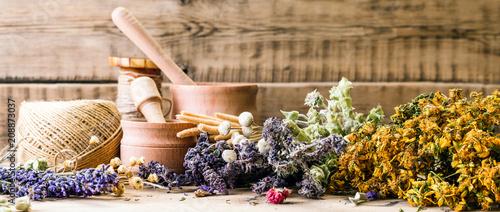 Fototapeta preparation of herbs, homeopathy, dried flowers, banner obraz