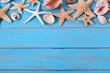 Tropical beach summer starfish background border