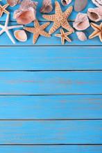 Tropical Beach Summer Starfish Background Border Vertical