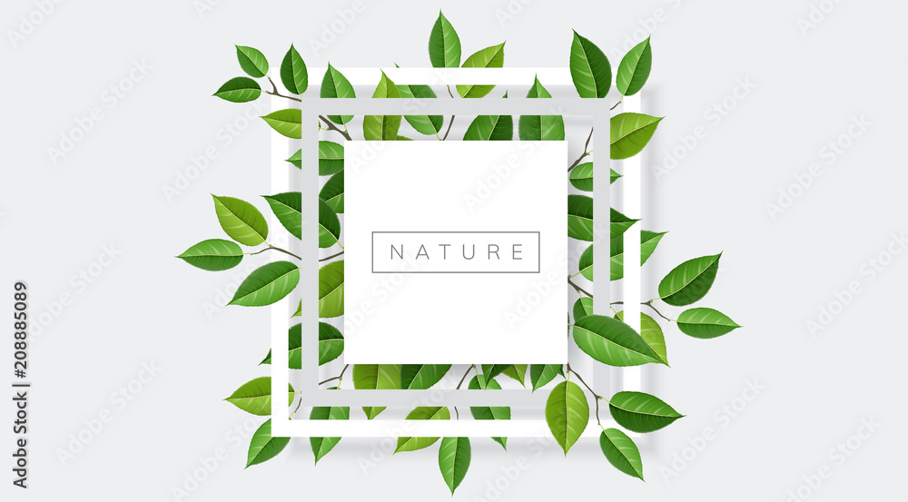 Fototapety, obrazy: Geometric nature frame with tree branches and leaves. Vector illustration for nature related and eco design