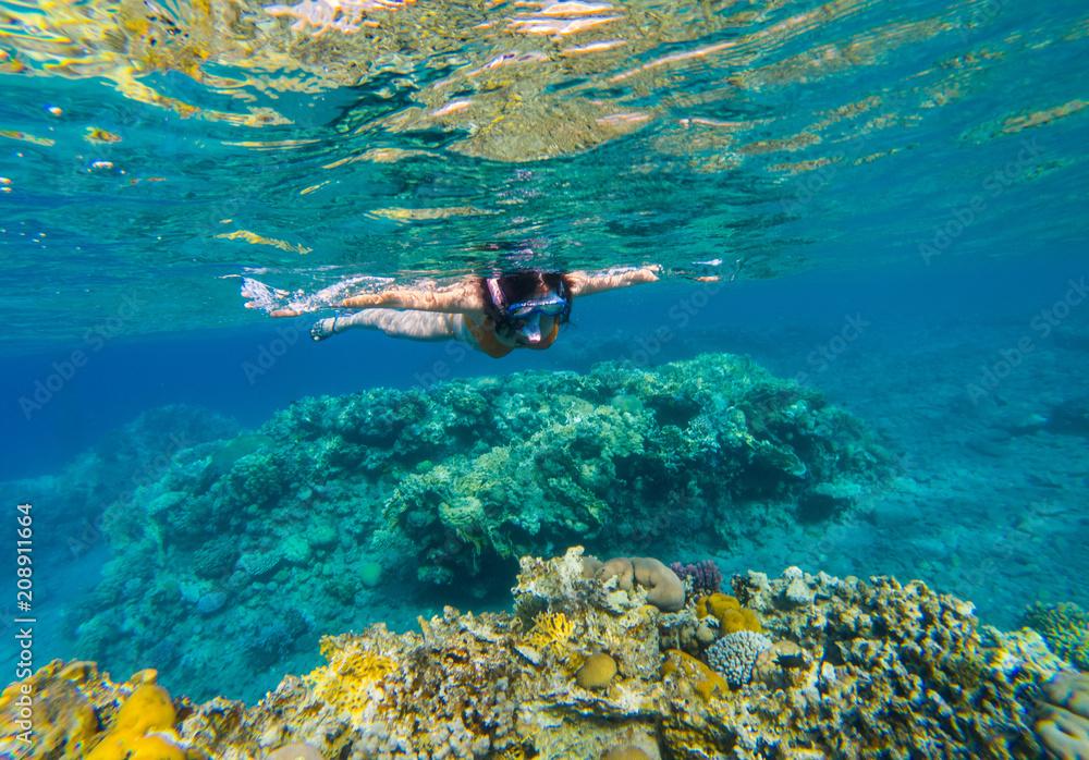 Fototapeta Woman snorkeling above coral reef