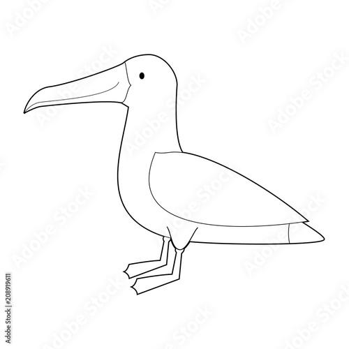 Fotomural  Easy Coloring Animals for Kids: Albatross
