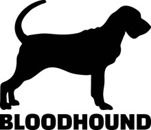 Bloodhound Silhouette Real Word