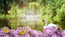 Mysterious Nature Background W...