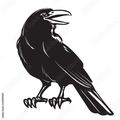 Photo Graphic black crow isolated on white background