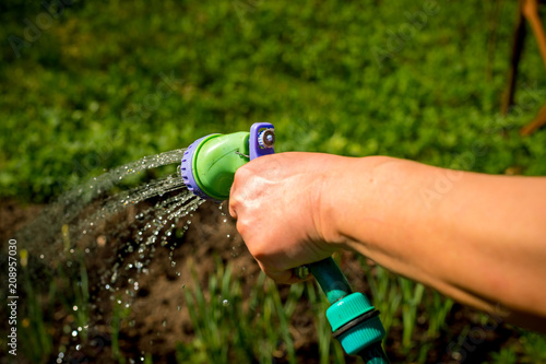 Senior Woman S Hand With Garden Hose Watering Plants