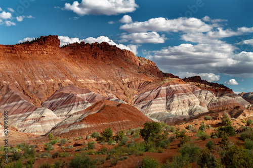 Fotografie, Obraz  Beauty view of the rainbow-like layers of Grand Staircase Escalante National Monument in Paria Utah, USA