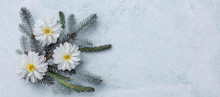 Winter Holiday Composition Sil...