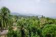 Beautiful landscape of tropical plants of the Andaman Sea to Port Blair India