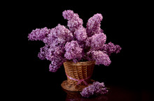 A Bouquet Of Lilac In A Purse On A Black Background