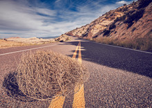 Tumbleweed On A Road, Color To...